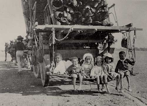 Children on back of a horse team hauling timber