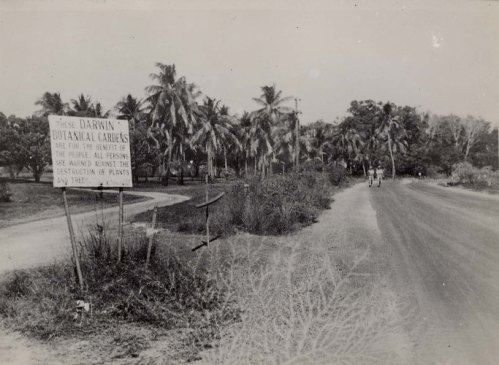 Darwin Botanical Gardens, 1945