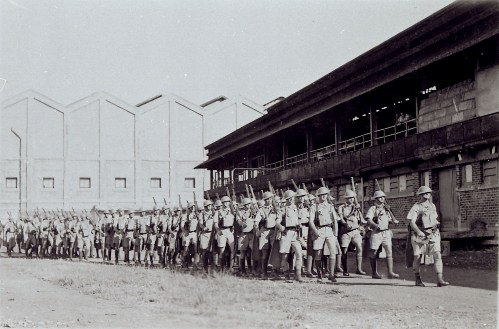 Battle order, 1939 (at Vesteys Barracks, former Meatworks)